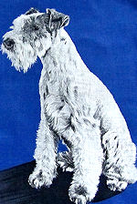 vintage dog hanky