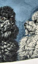 vintage designer poodles hanky